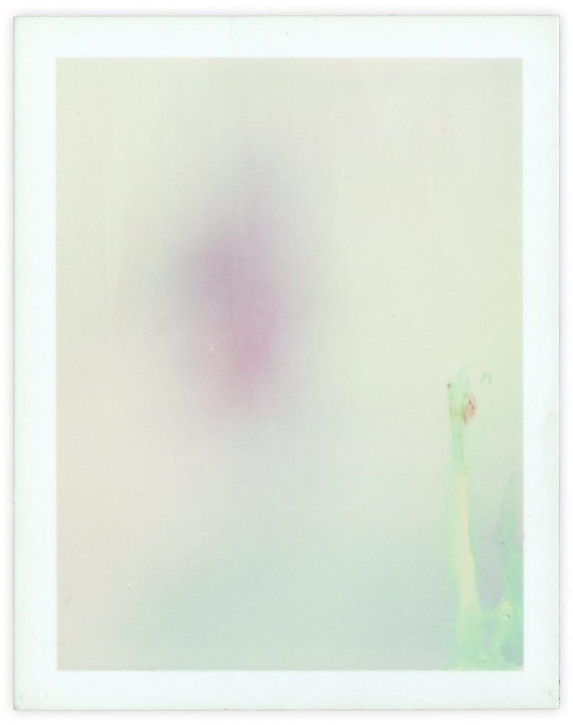 Polaroid 21