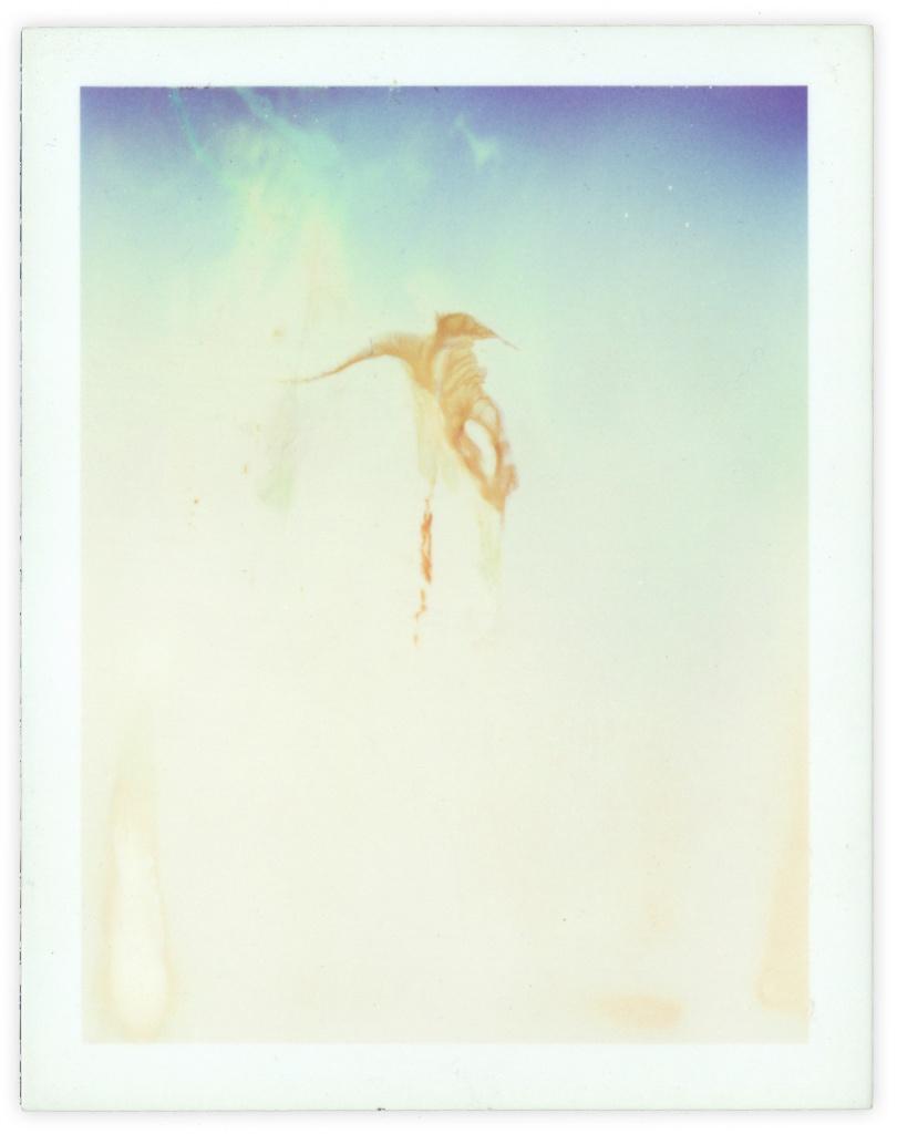 Polaroid 27