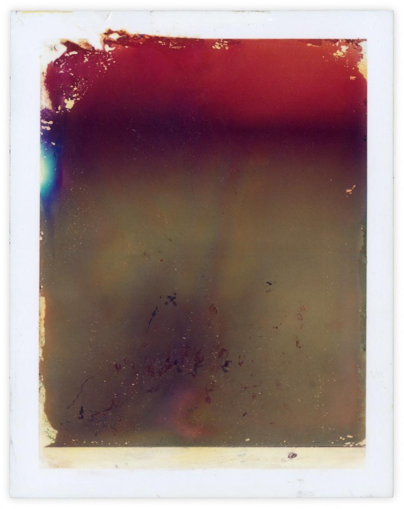 Polaroid 9